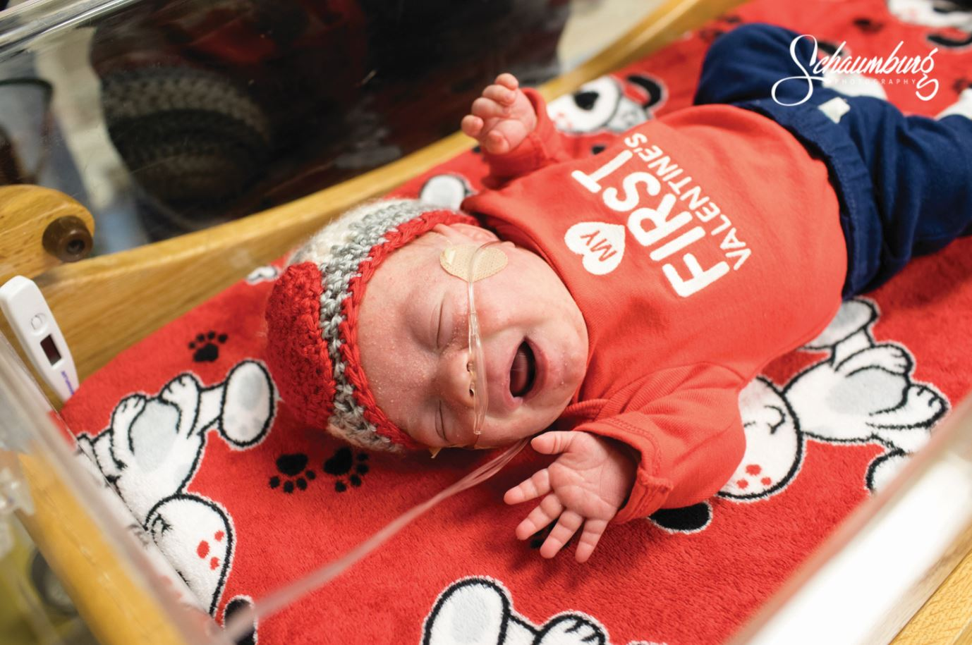 Saint Luke's Hospital's NICU Babies Find Fame After Holiday Photos Go Viral